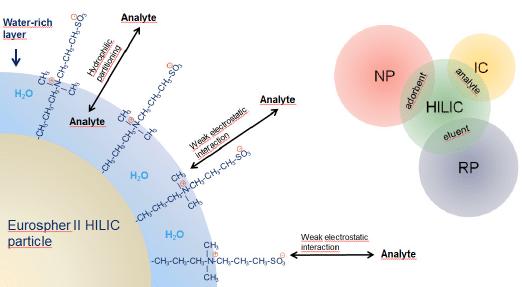 Diretrizes de desenvolvimento de métodos HILIC - Interação Hidrofílica de Cromatografia Líquida
