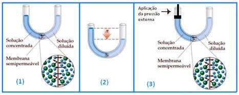 Fluxo de moléculas do solvente - osmômetro