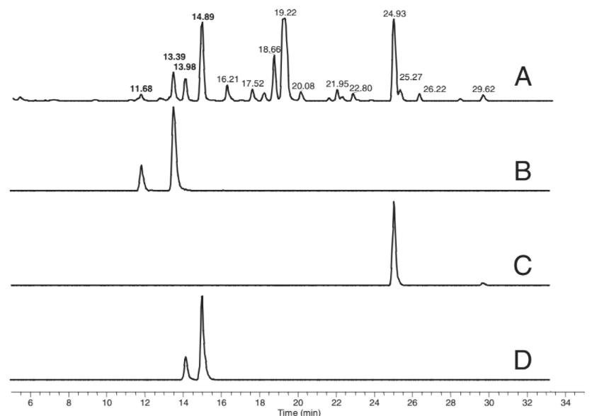 Cromatografia de fase reversa com detector UV (A) e espectroscopia de massa (B-D). Os picos menores nos traços B-D se referem aos aminoácidos-D.