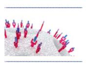 Cromatografia de Afinidade (AC)
