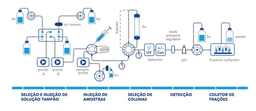 Bio Purificação AZURA