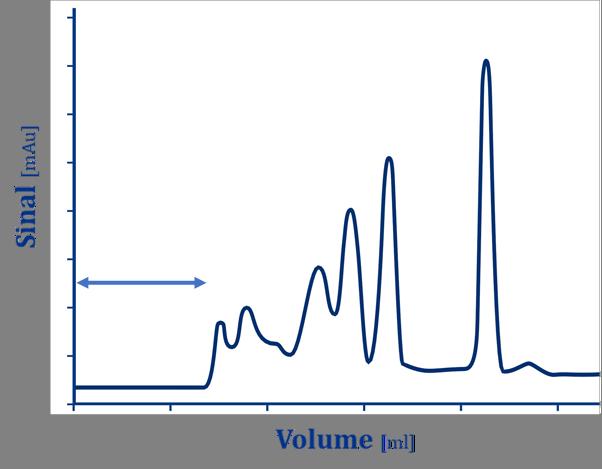 Cromatografia por exclusão de tamanho